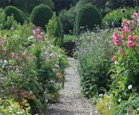 Garden or Gardening