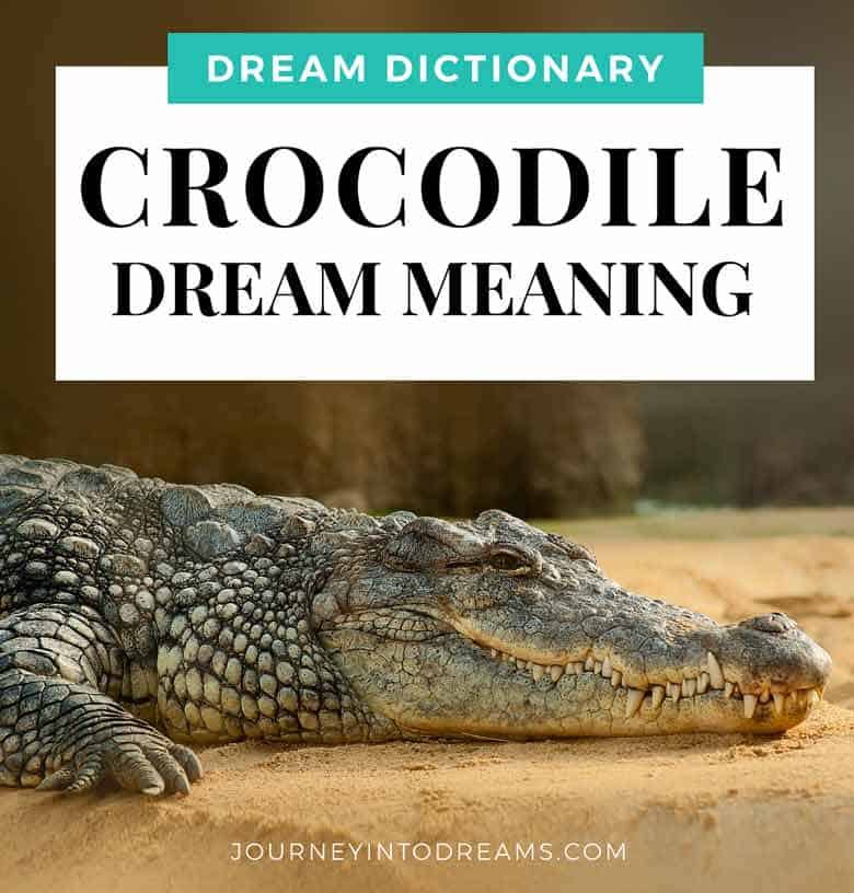crocodile dream meaning