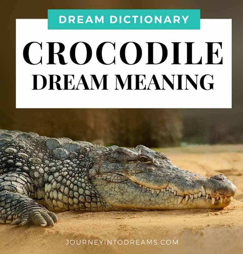 Alligator & Crocodile Dream Meaning Interpretation