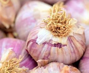 Garlic Symbolism and Dream Meaning