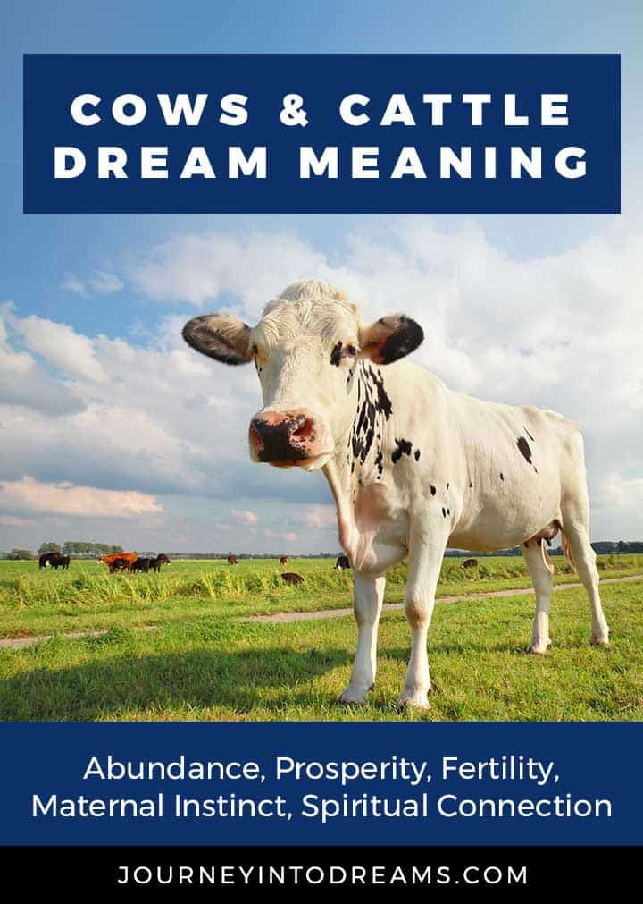 dream meaning cows