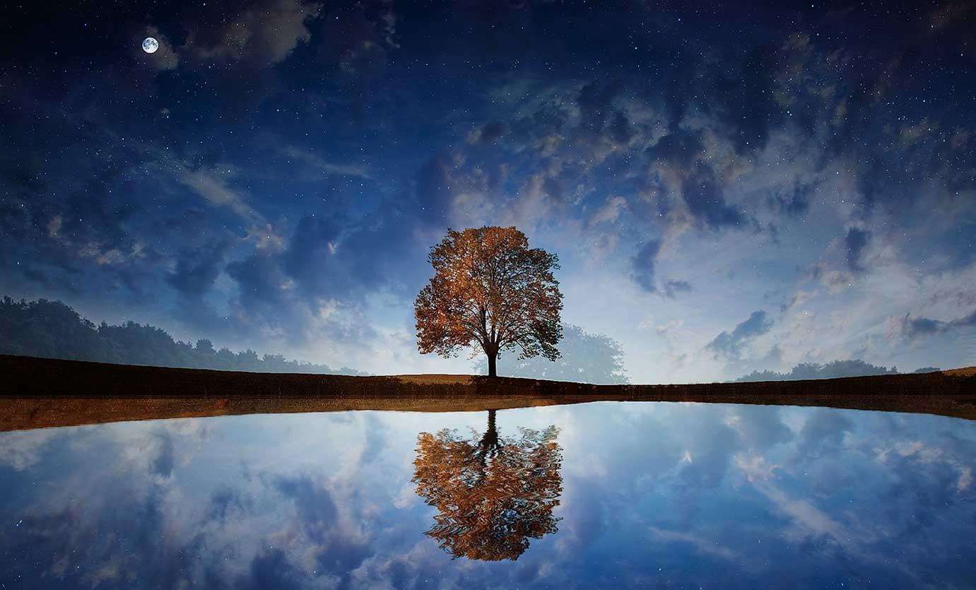dream meaning interpretation