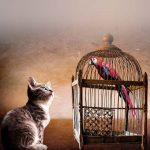 parrot being held captive by cat as a symbol of insecurity