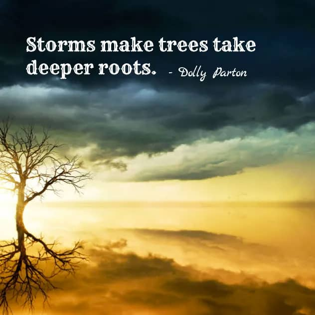 storm roots dolly parton quote