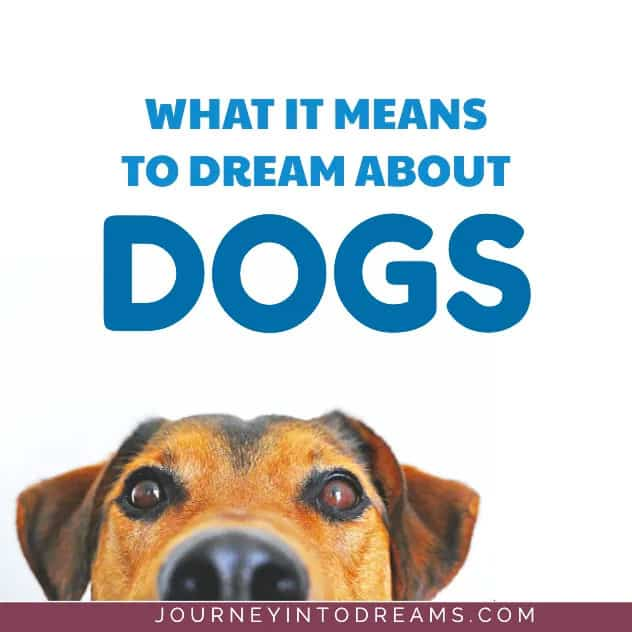 what it means to dream about dogs