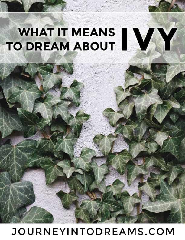 what it means to dream about ivy