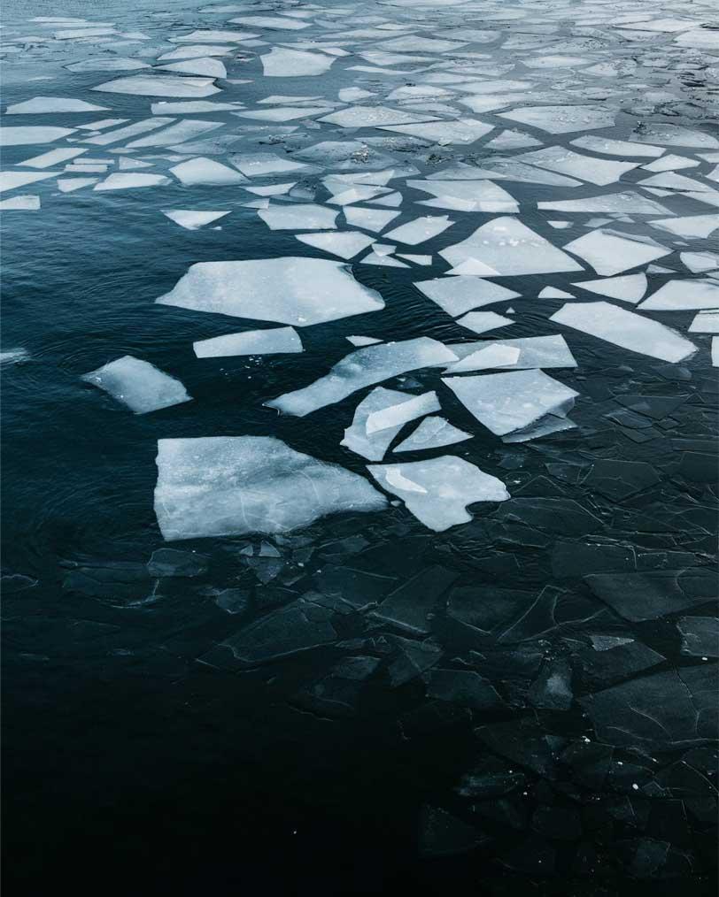 frozen shards of ice