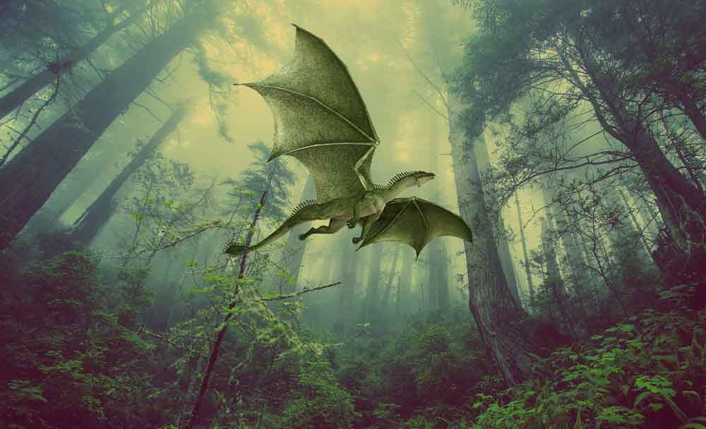 Flying Dragon in Forest
