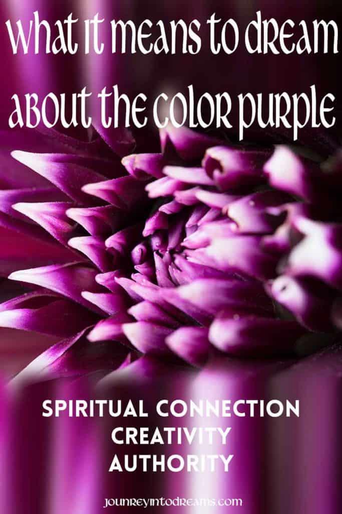 Pinterest Purple