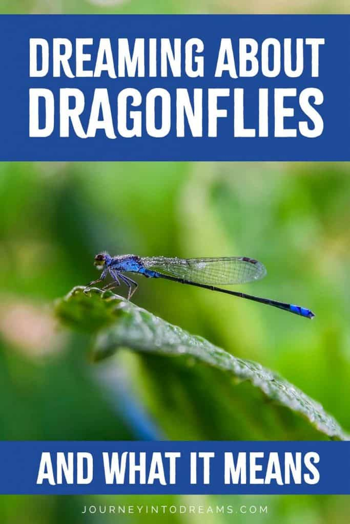 dragonflies dream meaning