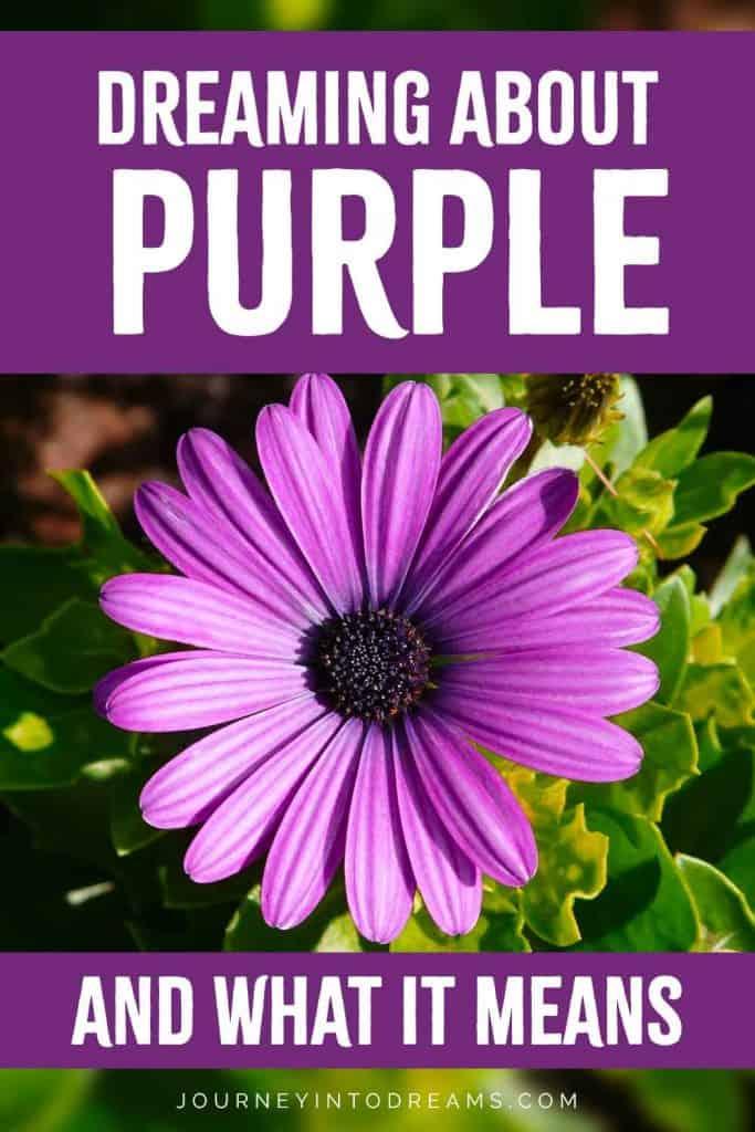 dream about purple