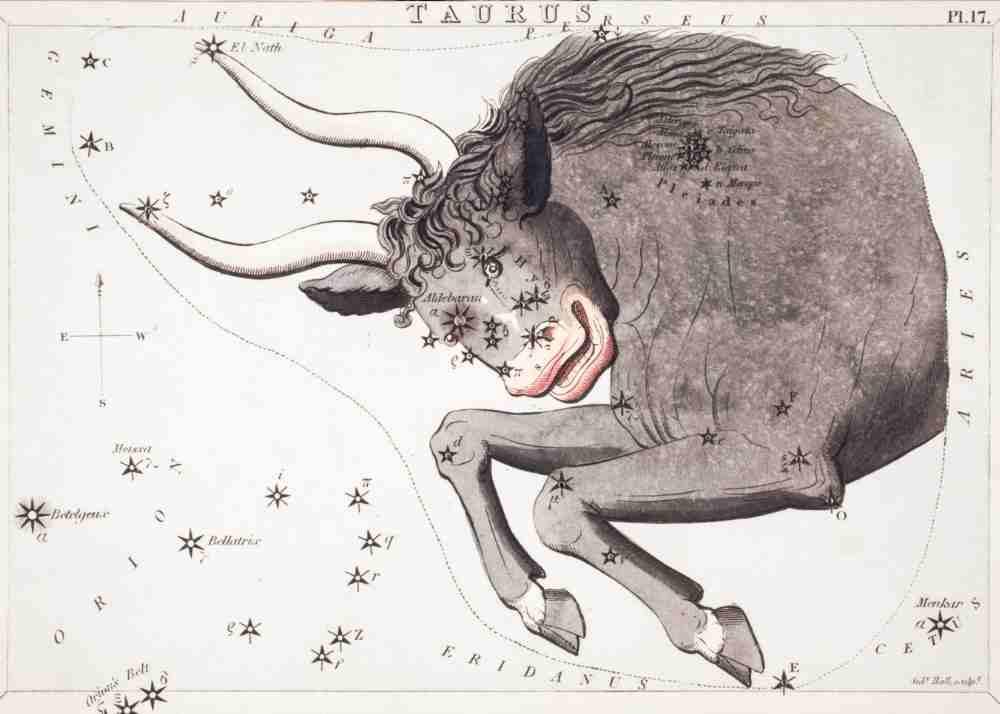 taurus bull constellation