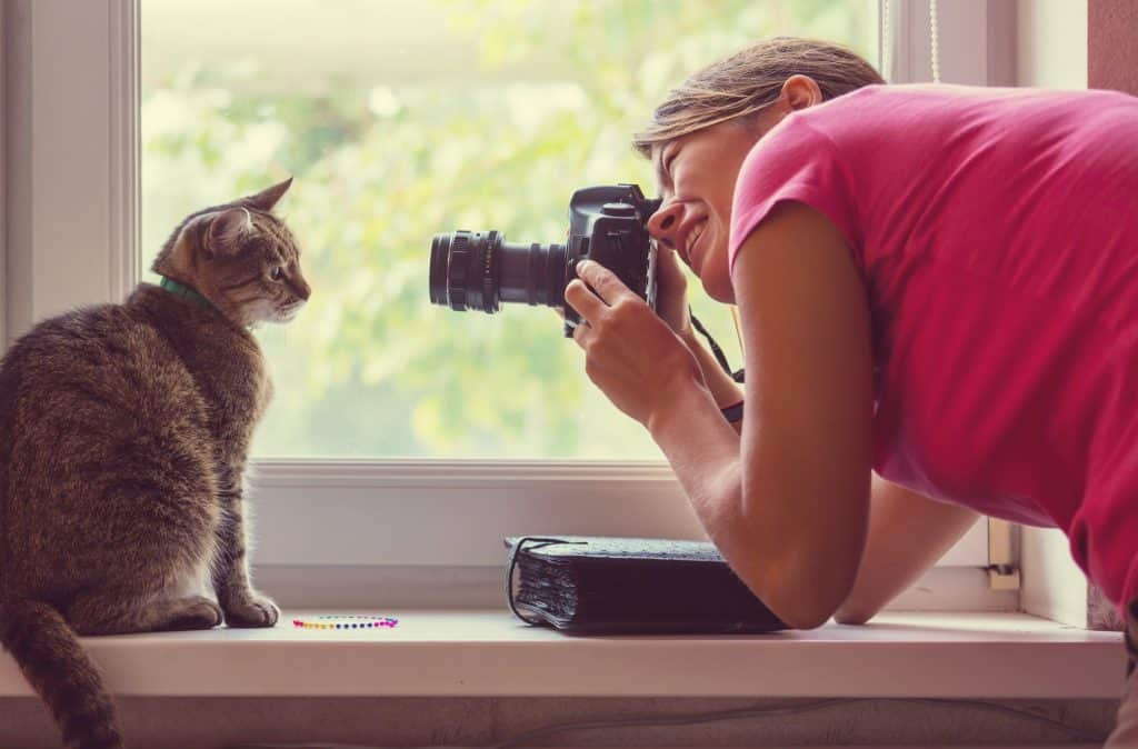 Cat and photographer