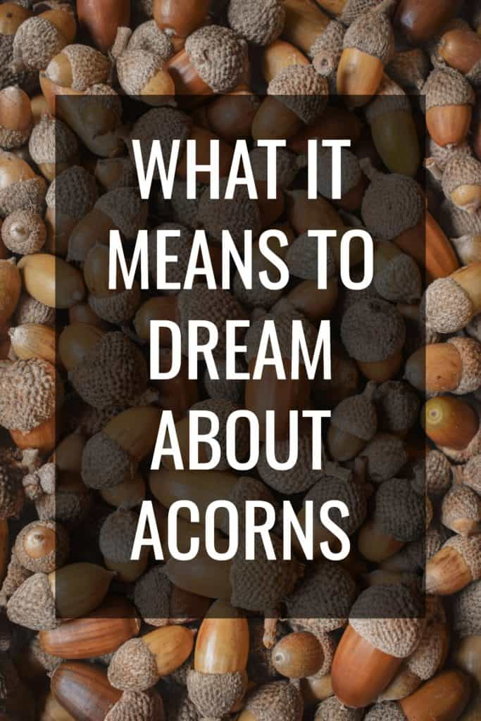 what it means to dream about acorns
