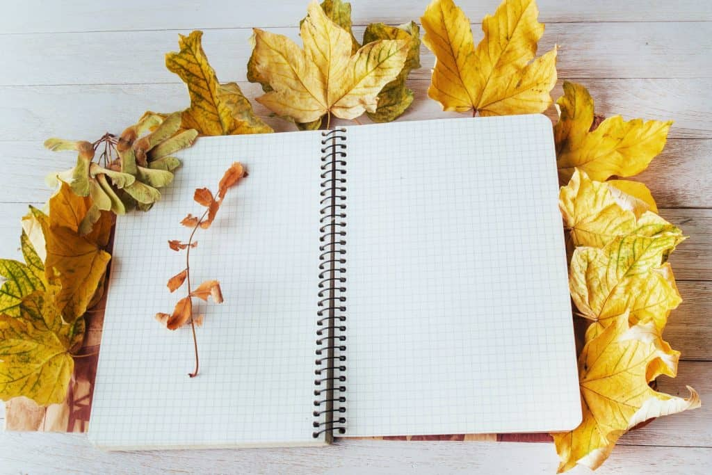 Yellow maple leaves on top and notebook lying